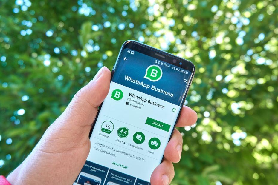 Die WhatsApp Business App